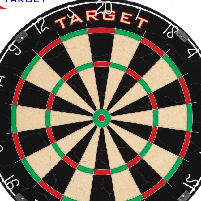 Darts Board Steel Pro Tour